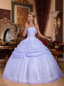Strapless Long Lilac Evening Gowns For Military Ball with Appliques