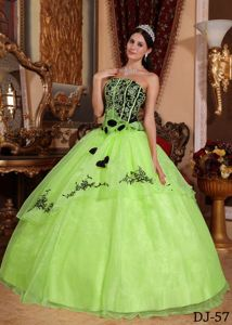 Appliqued Yellow Green Ball Gown Military Ball Formal Dresses