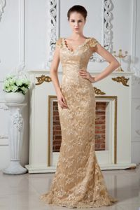 Champagne V-neck Lace Plus Size Formal Dresses with Embroidery