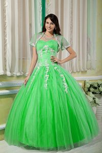 Spring Green Tulle Military Ball Dress with Beading and Appliques
