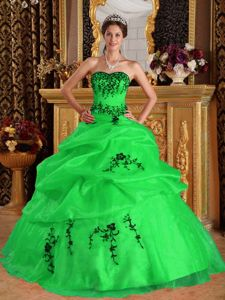 Black Embroidery Green Pick-ups Formal Dress for Military Ball