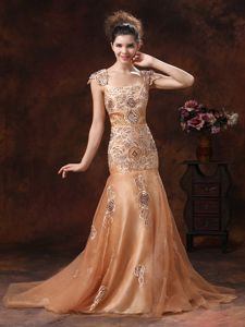 Brown Embroidery Square 2013 Gown for Military Ball with Straps