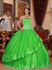 Embroidery Spring Green Strapless Beading Military Ball Gown