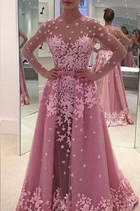 Glamorous Lilac Tulle Zipper Ball Gown Prom Dress Long Sleeves With Train Sweep Train Appliques