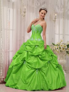 Appliques and Pick-ups Decorate Spring Green Military Ball Dress