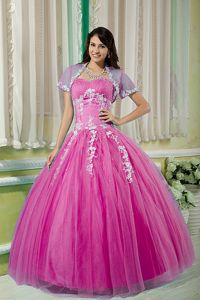 Georgia Fuchsia Gown For Military Ball with Beaded and Appliques